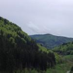 Lichtquell - Schwarzwald Blick