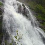 Lichtquell - Todtnauer Wasserfälle